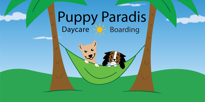 Puppy Paradis Dog Daycare Salem NH
